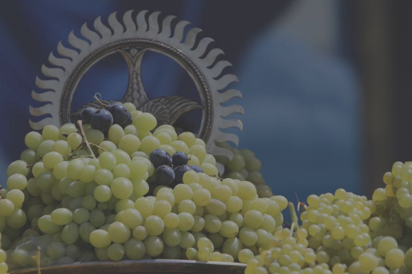 Sermon Assumption of St. Mary Grape blessing